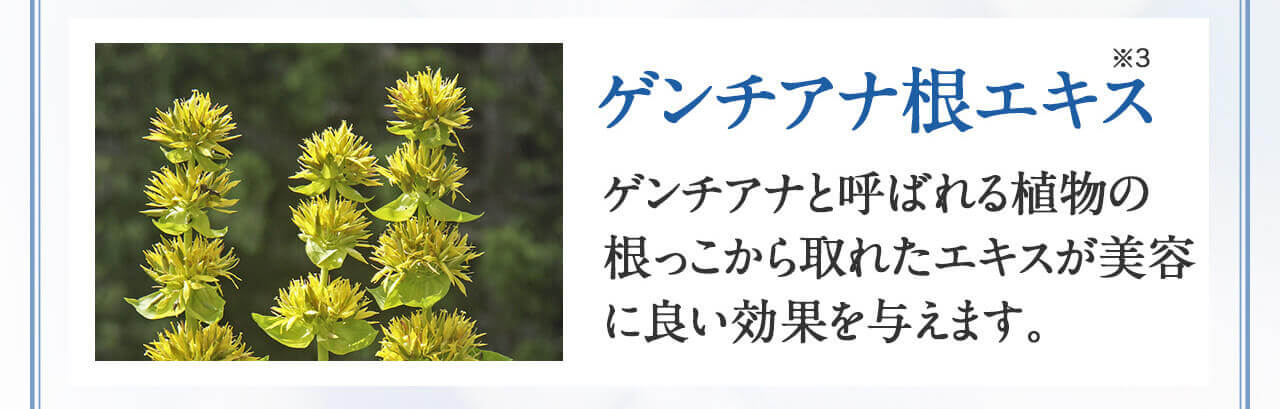 ゲンチアナ根エキス ゲンチアナと呼ばれる植物の根っこから取れたエキスが美容に良い効果を与えます。