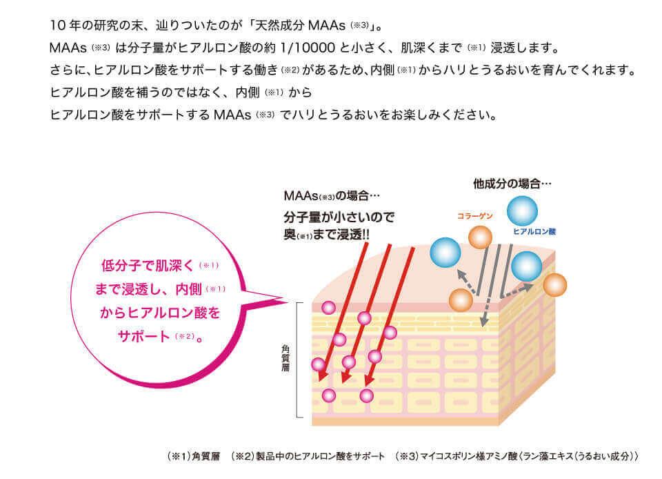 10年の研究の末、辿りついたのが「天然成MAAs」。MAAsは分子量がヒアルロン酸の約1/10000と小さく、肌深くまで浸透します。さらに、ヒアルロン酸をサポートする働きがあるため、内側からハリとうるおいを育んでくれます。ヒアルロン酸を補うのではなく、内側からヒアルロン酸をサポートするMAAsでハリとうるおいをお楽しみください。